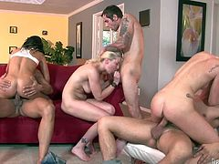 Maia Davis, Taylor Russo and Whitney Grace are swinging ladies who cant get enough. They get their holes drilled by each others sex partners in this insane orgy in the living room. They do it like mad.