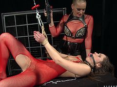 Three astonishing well figured bitches make it out in BDSM way. Check how Ashley facesits one of her kinky slave girls while another one sits in the slave cage blindfolded.