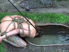 Rain DeGrey needs to be punished. She's tied up like a whore and she can't escape the torture. She's made to drink dirty water from a dish and then made to slurp down more water from the trough. She pushed under water so she can't breathe and is drowning and gasping for air.
