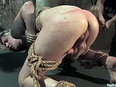 Blonde girl gets tied up and whipped painfully. Later on she blows big dick and gets fucked from behind.