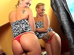 Good looking slut Kathia Nobili poses over her wardrobe, tries on different dresses and shows us her magnificent pussy at the end. This trimmed beaver is perfect.