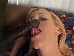 Kelly looks so cute and innocent but she's craving some dark trouser meat and these two lads are more than happy to oblige. She jumps them and she's tugging and slurping those big dicks in no time. She really seems to have her work cut out for her!