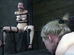 Penny Pax and Sarah Jane Ceylon are tied up by their cruel male master. One is in stocks and the other is tied up with rope and all fours. If you like she women in pain this clip is for you. He pulls their hair and prods ant their pussies and assholes.