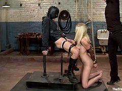 Stunning blonde babe gets tied up and gagged. After that she gets fucked deep in her pussy and mouth.