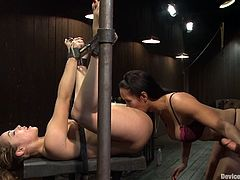 Tied up girl gets her pussy licked. After that she gets fingered and fucked with strap on. After that she also sucks a dick.