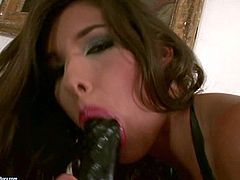 Clara G, Sandy, Puma Swede, Zafira, Anita Pearl and other porn babes are hot and sexy in this compilation featuring temptresses with bright red lips masturbate. They finger and dildo fuck each others assholes and pussies.