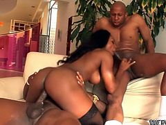 Persia is a black and gorgeous babe who is going to take two fat black cocks in her ass and pussy, moaning like crazy in the threesome.