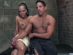 Cute ebony shemale Foxy is having fun with her BF Lobo indoors. They pet each other and have oral sex and then Foxy destroys Lobo's hot butt.