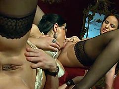 See the exquisite brunette hoes Renata Black and Claudia Rossi munching their shaved slits while getting pounded hard by a kinky stud in this amazing vid.