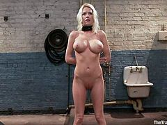 Amazingly hot blonde girl undresses and then gets tied up. Then she rides big black dildo and gets toyed with a vibrator.