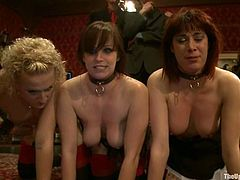 Horny chicks get tied up and gagged. After that they get their tight pussies drilled deep and hard by Black guy with big dick.