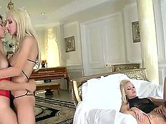 Hot girls in rather exciting lingerie Eufrat Mai, Lux Kassidy, Riley Jensen and Sammie Rhodes are hotly licking and sucking each others holes!