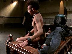Skinny Black chick gets tied up. Her master also fixes clothespins to her body. After that she blows a dick and gets fucked in her wet pussy.