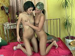 These horny babes have a great time eating one another's wet pussies in this lesbian scene as you contemplate wishing you were a part of it.