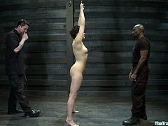 Short-haired brunette milf Alice Kingsnorth lets Jack Hammer bind and hang her up in a basement. Then the man takes a dildo and begins to rub Alice's snatch with it.
