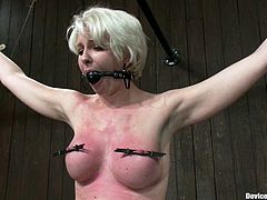 The short-haired blonde Devon Taylor is going to get nipple tortured in this bondage video where she's bounded by devices.