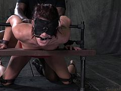 Whore Cici is experiencing the full wrath of her black executor. He squeezed her in a bondage device and now drills her pussy merciless. The black hunk fucks her hard and makes this whore scream with pain although her mouth has been gagged with a bondage device. Things won't get any easier for her so watch more!
