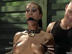 Tied up and gagged brunette girl in hot BDSM video. Her master and mistress fix clothespins to her body and then fist her pussy deep.