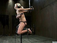 Haley Cummings is the girl getting toyed and tortured in this wild BDSM video packed with bondage and more kinky action.