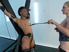 Amazing blonde cutie Lea Lexis ius having fun with ebony hottie Nikki Darling. Lea ties Nikki up, tortures her and then plays with her nice throbbing snatch.