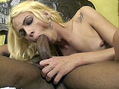 Sexy blonde shemale being fucked in her asshole