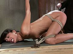 Beautiful brown-haired chick Lyla Storm is having fun with some dude in a cellar. The man ties the beauty up, strokes her amazing body and then plays with her sweet pussy.