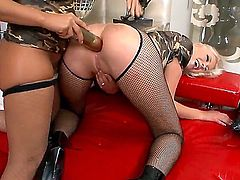 Hardcore lesbian video with seductive curves Rocco Siffredi and her girlfriend. They use the gigantic dildoes for deep throat oral and anal penetrations! They demonstrate rally crazy things!