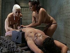 Two smoking hot and most sadistic bitches are inflicting ebony sex slave to pain. They tie her up and make her feel some electrodes around her petite body!