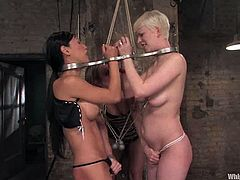 Two sexy chicks get spanked and tied up by stunning Harmony. After that these two girls toy each others pussies with a strap-on fixed to their heads.