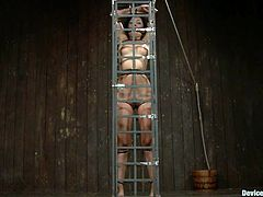 Yasmine doesn't needs to much space to move because all she needs to do is endure what her executor does with her sexy body. The hot brunette is immobilized in that small bondage cage and the guy fucks her ass with a dildo between the bars. Yeah, that's exactly what she deserves for the warm up. Wanna see more?