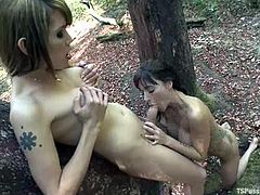 Rain DeGrey,TS Foxxy and two more persons are having fun in a forest. The girls please the trannies with blowjobs and then let the shemales drill their coochies deep and hard.