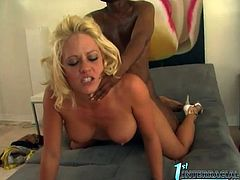 Big Tittied Blonde Holly Heart Tasting Black Cock for the First Time