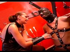 Two wild femdom sluts with big tits are having cock torture fun with a bonded man! Watch them playin with his stiff meat like filthy latex sluts!