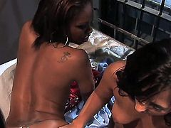 First-class hotties Lela Star, Reena Sky and Vanessa Monet playing delicious games in the jail