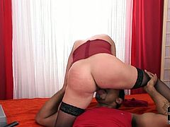 Dressed in a red lingerie and sexy black stockings the girl is obviously ready to suck hard on her boyfriend's cock. She takes his black boner in her slutty mouth and sucks it greedily. Then she climbs on top and rides him hard in cowgirl position.