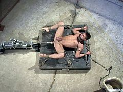 Sexy gay Pacifico is in the cell room, tied with chains&rope and mouth gagged. He stays laid on that mattress as the dildo attached on a fucking machine goes deep in his shaved anus. Pacifico has his balls squeezed with rope for some extra pleasure and he plays with his dick while getting ass drilled.