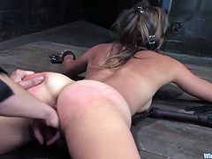 Adorable Vai gets tied up and gagged. Her mistress shoves a hook in the ass and then fists her vagina. After that Vai also get fucked with a strap-on.