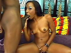 Spicy ebony with shaved pussy is getting black dick