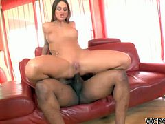 Zealous pallid brunette is ready for interracial nonstop fuck. Kinky bitch with droopy boobs and nice rounded ass is a fan of anal fuck. This awesome dick rider thirsts to be fucked missionary also on the couch and groans of delight like a mad one.