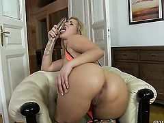 Leslie Taylor cant resist breathtakingly hot Linda Rays acttraction and fucks her ass like crazy