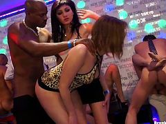 Filthy white chics take part in insane group sex orgy. They give zealous blowjob before they get nailed from behind in doggy style in group sex video by Tainster.