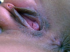 Cindy H plays with her tight bald pussy non-stop