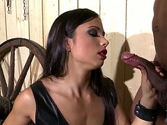 Tough mistress punishes two subs in a dirty BDSM style porn clip