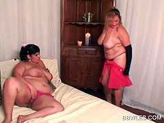 Two chubby lesbians stripping and sucking huge tits in bed