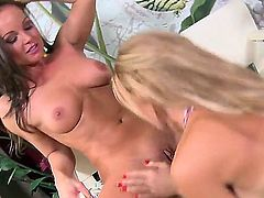 Silvia Saint and Stacy Silver spend time having sex