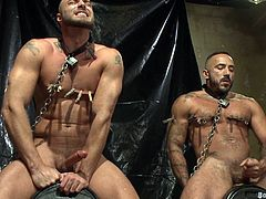 Take a look at this gay bondage video where two muscular guys are tied up and tortured by other two fellas before having fun with one another.