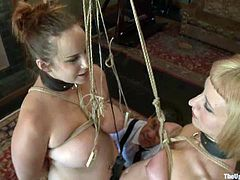 Their master loves, when they go lesbian. They'd do more, if he'd untie them. But heavy bondage is a necessary asset of this BDSM session!