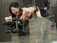 The Asian Tia Ling is getting her asshole fucked by a machine and she can't do anything to stop it as she's strapped to a bondage device that immobilizes her.
