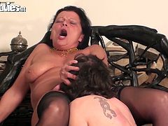Frightening horny brunette fatso spreads legs to get mature cunt licked