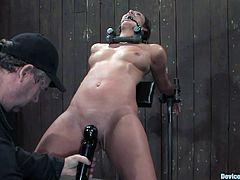 A girl in a bondage session is getting her pussy licked by another girl before having her nipples tortured and her pussy toyed.